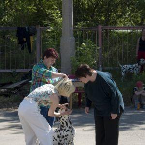 Монопородная выставка далматинов. Клуб «ФАУНА»