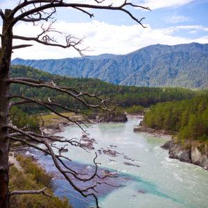 Чемальская ГЭС - Река Чемал (на снимке синяя) впадает в Катунь (на снимке зелёная)